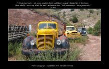Old Trucks - Chip Haldane