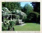 Rose Garden, Priory Park - Nothingtosee Movealongnow