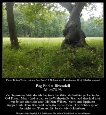 Bag End To Rivendell Miles 73-98 - Belfairs Wood, Leigh on the Sea, Essex - Nothingtosee Movealongnow