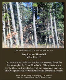 Bag End To Rivendell Miles - Pine Barrens - Niki Flow