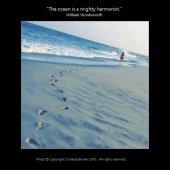 Her Footprints - Contessa Brown
