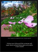 A Garden Path - Contessa Brown