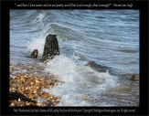 Shoeburyness, East Beach, Remains of Old Loading Piers from the Brick Industry - Nothingtosee Movealongnow