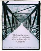 A Wild Dream Walk - Nicole Huguenin