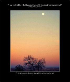 Sunset, Moon Rise - Contessa Brown