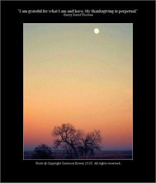 Sunset, Moon Rise - Contessa Brown
