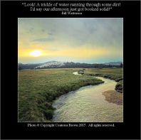 Sunset Stream - Contessa Brown