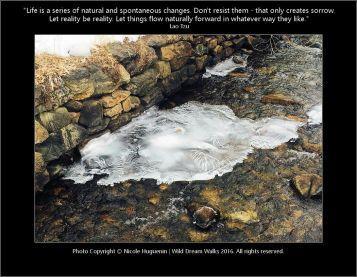 Ice Flow - Nicole Huguenin