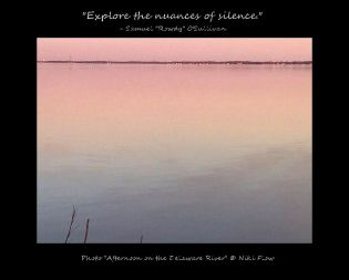 Delaware River - Niki Flow