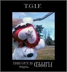 Gems 2.28 tgif flipped bear for Evie