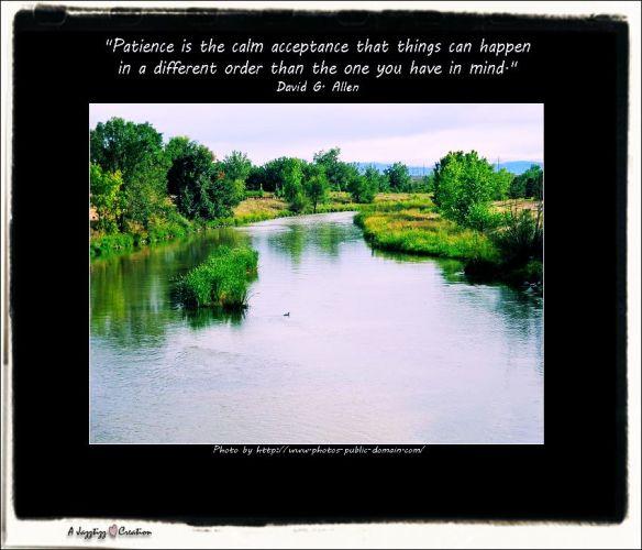 Gems 2.38 Patience David G.Allen Duck Pond