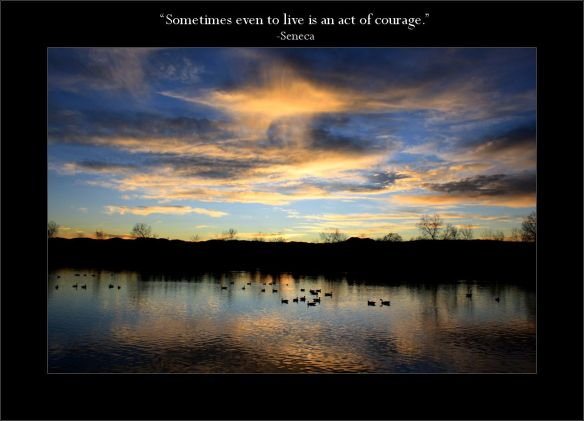 Gems 2.39 Seneca courage patience perseverance live sunset lake geese