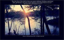 Gems 2.45 Contessa Brown Galatians 5-22-23 Lake Evening Trees