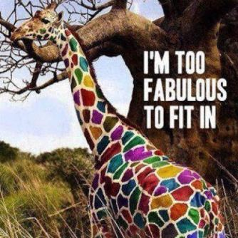tgif-10-this-giraffe-is-fabulous