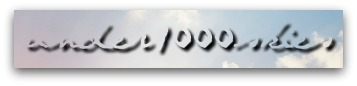 under1000skies logo 1