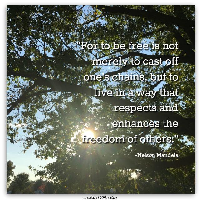 Gems 379 Nelson Mandela Freedom Respect