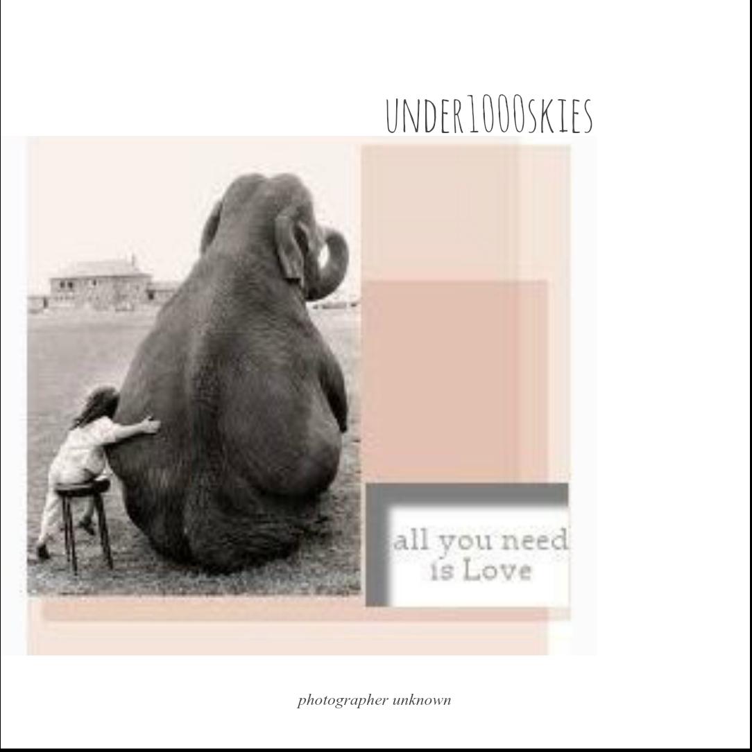 4.85 johnpaulgeorgeringo love love love