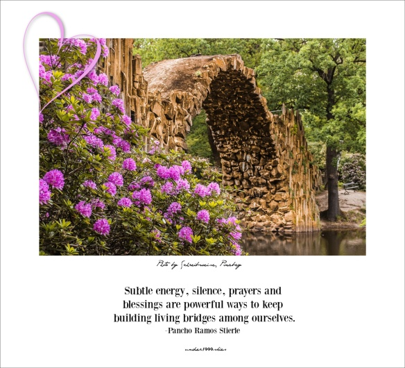 Pancho Ramos Stierle living bridges quote card